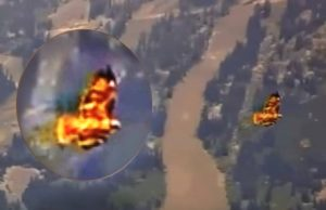 large fire bird seen near Yellowstone as seismic activity increases