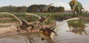 new species of raptor fossil discovered in New Mexico