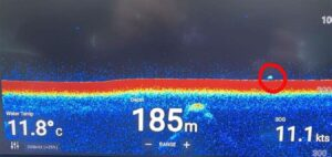 large object caught on sonar in Loch Ness by cruise ship