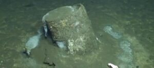 barrels of toxic chemicals discovered off California coast