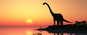 woman unexpectedly stumbles upon 165 million yr old dinosaur print