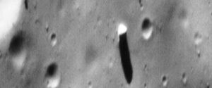 new study suggests looking for ET artifacts on the moon